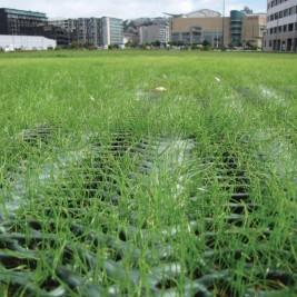 grassprotecta04